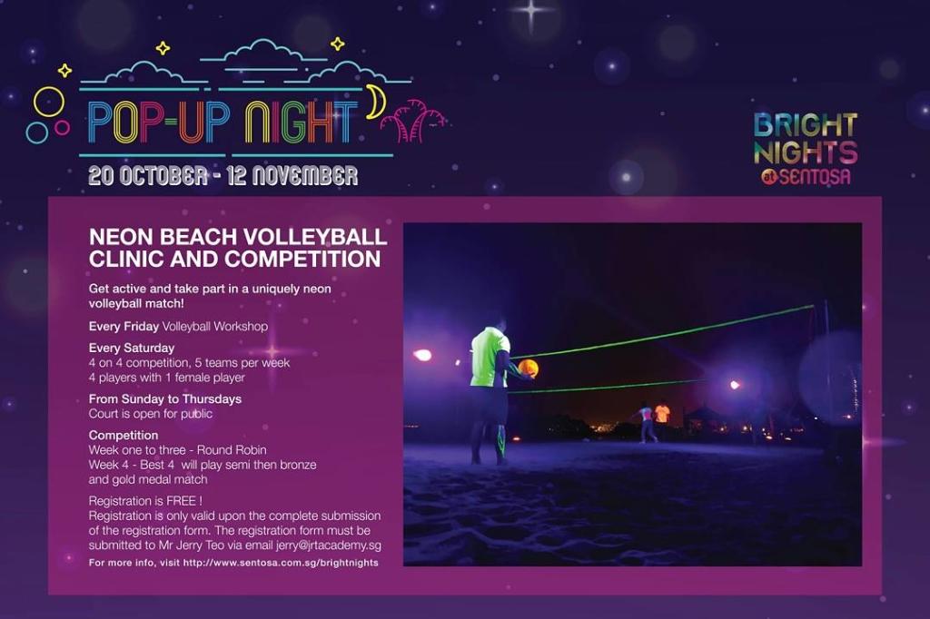 Neon Beach Volleyball (4)
